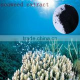 100% soluble in water seaweed extract extracts of marine algae for agricultural fertilizer use