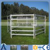 Factory Direct Australia standard High quality Pre-galvanized steel rails Cattle fence panels