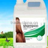 2014 OEM Collagen black hair Shampoo brands 5kg