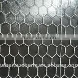 (Anping Manufacturer) Galvanized Hexagonal Chicken Wire Mesh/Poultry Netting(Chicken/Rabbit/Poultry Wire)