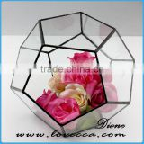 Beautiful glass crafts clear glass vases glass terrarium round