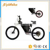 High quality cheap 48v electric fat bike 1000w