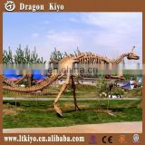 Dinosaur Park Equipment Dinosaur Skeleton