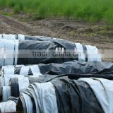 Mulch film, mulch sheet, mulch sheetings for white asparagus                                                                         Quality Choice