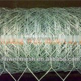 lowest price and best quality 3/4'' Galvanized Hexagonal Wire Netting/hexagonal wire mesh/galvanized netting wire