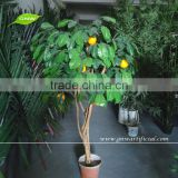 GNW BTR057 mini artificial banyan tree bonsai for house and garden decor