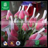 Chinese factory manufacturer PE protective rose bud net                                                                         Quality Choice