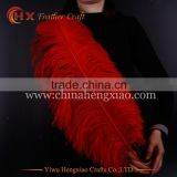 wholesale colored 26-28 inch ostrich feathers for sale in india