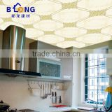 2016 New Decorative Professional Metal Frame Suspended Ceiling
