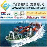 cheap FCL&LCL sea freight from China to India Chennai