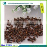 High Quality Spice Dry Clove