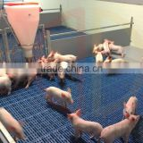 Hog pen floor for piglet plastic material poultry slatted floor and outdoor plastic floor