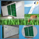 Automatic soilless cultivation seeds grains sprouting machine for growing livestock,animal,cattle,sheep fodder