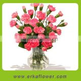 Wide varieties good smell carnation bouquet for wedding bride