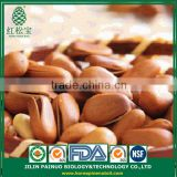 Direct Buy from China Snack Foods CIF Siberian Cedar Open Pine Nuts in Shell