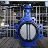 Ductile Iron Stainless Steel Lug Type Butterfly Valve Hand Operated