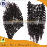 Full Head Full Cuticle Unprocessed Virgin Brazilian Afro Kinky Curly Clip In Hair Extension For African Women