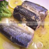 Canned Jack Mackerel in vegetable oil Wholesale best fresh mackerel material manufacturer price