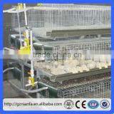 Chicken use welded wire chicken layer cages poultry farm equipment used chicken cages for sale(Guangzhou Factory)