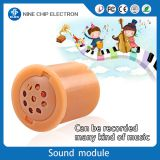 Recordable push button sound modules music box for plush toys