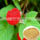Pure Natural Raspberry Extract 99% Raspberry Ketone