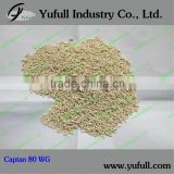 Captan 95%TC/50%WP/80%WDG/WG Fungicide factory