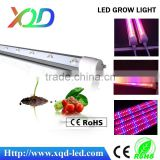 Led Plant Grow Light tube Bulb Red + Blue for Hydroponic Plants