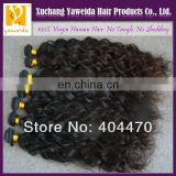 2014 Alibaba China most fashionable remy raw unprocessed curl brazilian hair