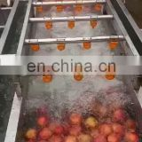 Citrus fruit sorting machine/ Fruit Vegetable Washing Drying Waxing Sorting Processing Machine