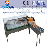 New Arrival Chicken Eggs Grading And Sorting Machine On Sale