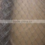 Galvanized Chain Link Fence/PVC Coated Chain Link Fence Price specilised used in the School playground & Garden