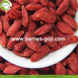 Factory Supply Nutrition Dried Organic Goji Berry
