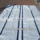 4x6 Durable Waterproof White PE Tarpaulin With Blue Or Black Reinforced Band For Earthquake