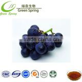 Grape skin extract resveratrol food additives resveratrol 98% 99%