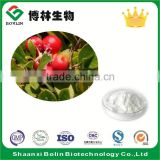 Factory Supply Pure Natural Bearberry Leaf Extract Alpha Arbutin Powder