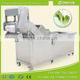 WA-1000 Industrial washing machine,commerial vegetable washer,ozone fruit and vegetable washer with stainless steel