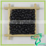 Cook Black Beans Dried Wholesale Price