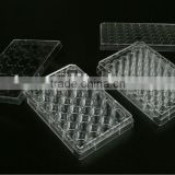 Cell Tissue Culture Plate
