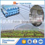 cheap 6 mil greenhouse poly, poly film for greenhouse