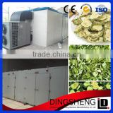 fruit dryer machine / fruit and vegetable dryer / vacuum dryer for fruit and vegetable