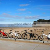 Electric bike for sale with 250W/350W/500W bafang motor made in China
