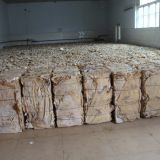 dried cattle hide