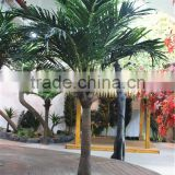 Home garden decoration 100cm to 1000cm Height artificial indoor live plastic ficus red with green big palm tree EZLS05 1015