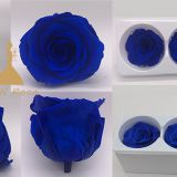 Yunnan High Quality Good Price Preserved Rose Bud 3 Packsfor Hotel Decoration