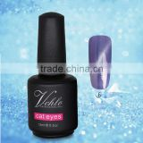 Professional Nail UV Gel Curing Soak Off Glitter Cat Eye Gel Polish 15ML