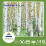 Good For obesity Birch Bark Extract Betulin