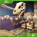 Sichuan OEM raptor skeleton replica for playground