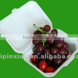 Hot sale disposable Fruit Food Container packing tray cooling tray for food