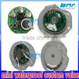 programmable mini waterproof custom voice push button recordable music sound module chip