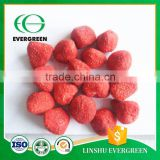 The New Season Sweet FD Healthy Freeze Dried Strawberry Fruit                                                                         Quality Choice